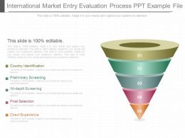 App International Market Entry Evaluation Process Ppt Example File