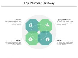 App Payment Gateway Ppt Powerpoint Presentation Summary Microsoft Cpb