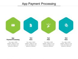 App Payment Processing Ppt Powerpoint Presentation Layouts Information Cpb
