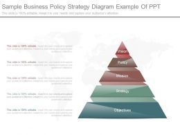 App Sample Business Policy Strategy Diagram Example Of Ppt