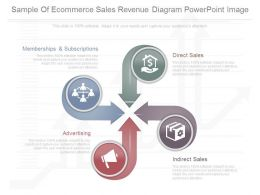 App Sample Of Ecommerce Sales Revenue Diagram Powerpoint Image