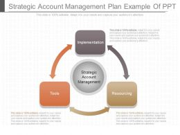 App Strategic Account Management Plan Example Of Ppt