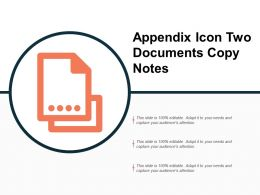 Appendix Icon Two Documents Copy Notes