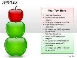 Apples success ppt 18