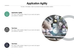 Application Agility Ppt Powerpoint Presentation Icon Example Introduction Cpb