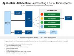 Application Architecture Representing A Set Of Microservices