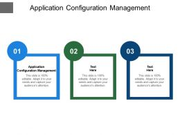Application Configuration Management Ppt Powerpoint Presentation Portfolio Cpb