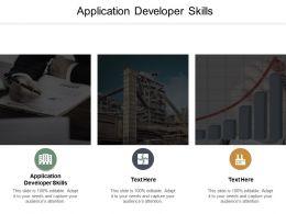 Application Developer Skills Ppt Powerpoint Presentation Layouts Cpb