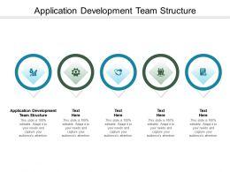Application Development Team Structure Ppt Powerpoint Presentation Icon Cpb