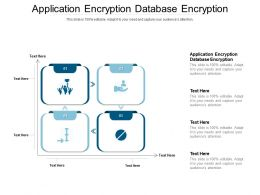 Application Encryption Database Encryption Ppt Powerpoint Presentation Infographics Slides Cpb