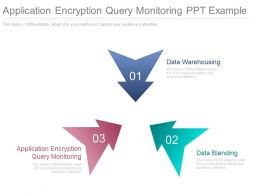 Application Encryption Query Monitoring Ppt Example