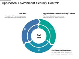 Application Environment Security Controls Configuration Management Malicious Software
