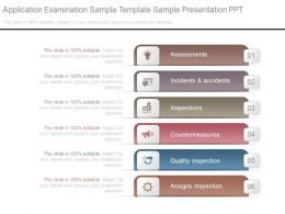 Application Examination Sample Template Sample Presentation Ppt