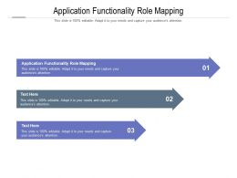 Application Functionality Role Mapping Ppt Powerpoint Presentation Layouts Background Cpb