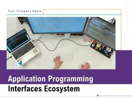 Application Programming Interfaces Ecosystem Powerpoint Presentation Slides