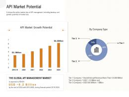 Application Programming Interfaces Overview API Market Potential Ppt Powerpoint Presentation Summary