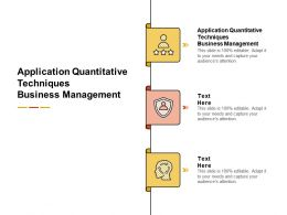 Application Quantitative Techniques Business Management Ppt Portfolio Examples Cpb