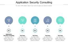 Application Security Consulting Ppt Powerpoint Presentation Summary Cpb