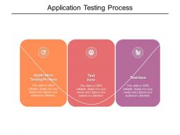Application Testing Process Ppt Powerpoint Presentation Show Outline Cpb