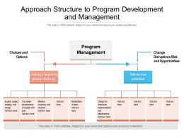 Approach Structure To Program Development And Management