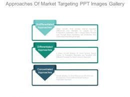 Approaches Of Market Targeting Ppt Images Gallery