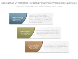 Approaches Of Marketing Targeting Powerpoint Presentation Examples