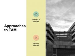 Approaches To Tam Communication Ppt Powerpoint Presentation Layouts Designs Download