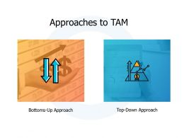 Approaches To Tam Growth A456 Ppt Powerpoint Presentation Ideas Example