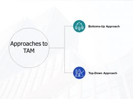 Approaches To Tam Ppt Powerpoint Presentation Gallery Backgrounds