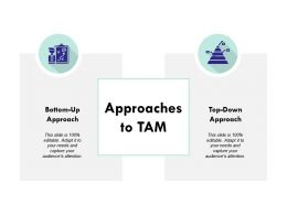 Approaches To Tam Ppt Powerpoint Presentation Ideas Professional