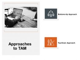 Approaches To Tam Ppt Powerpoint Presentation Layouts Topics