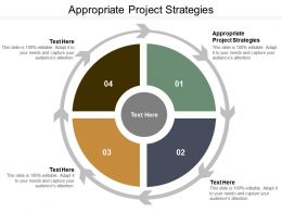 Appropriate Project Strategies Ppt Powerpoint Presentation Ideas Graphics Example Cpb