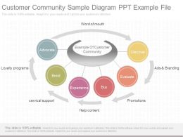 Apt Customer Community Sample Diagram Ppt Example File
