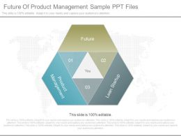 Apt Future Of Product Management Sample Ppt Files
