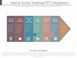 Apt Internal Survey Roadmap Ppt Infographics