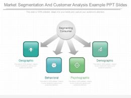 Apt Market Segmentation And Customer Analysis Example Ppt Slides