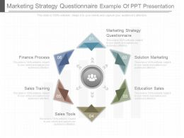 Apt Marketing Strategy Questionnaire Example Of Ppt Presentation