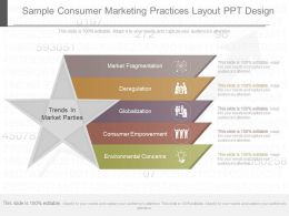 Apt Sample Consumer Marketing Practices Layout Ppt Design