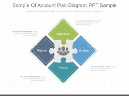 Apt Sample Of Account Plan Diagram Ppt Sample