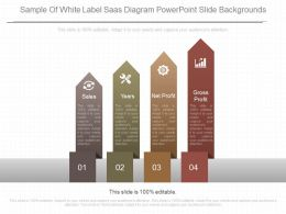 Apt Sample Of White Label Saas Diagram Powerpoint Slide Backgrounds