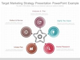 Apt Target Marketing Strategy Presentation Powerpoint Example