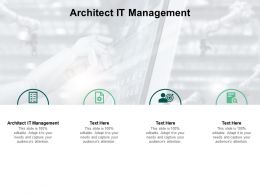 Architect It Management Ppt Powerpoint Presentation Infographic Template Example Topics Cpb