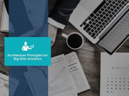 Architecture Principles For Big Data Analytics Ppt Powerpoint Presentation File Design Ideas