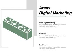 Areas Digital Marketing Ppt Powerpoint Presentation Gallery Graphics Download Cpb