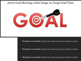 Arrow Goal Showing A Dart Image On Target Goal Text