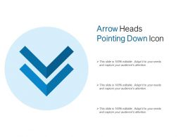 Arrow Heads Pointing Down Icon