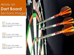 Arrow On Dart Board Sections Image