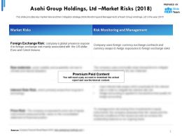 Asahi Group Holdings Ltd Market Risks 2018