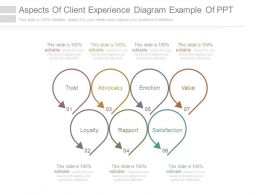 aspects_of_client_experience_diagram_example_of_ppt_Slide01