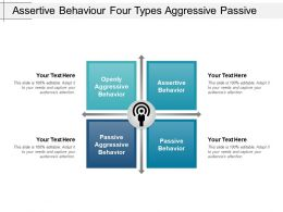 Assertive Behaviour Four Types Aggressive Passive